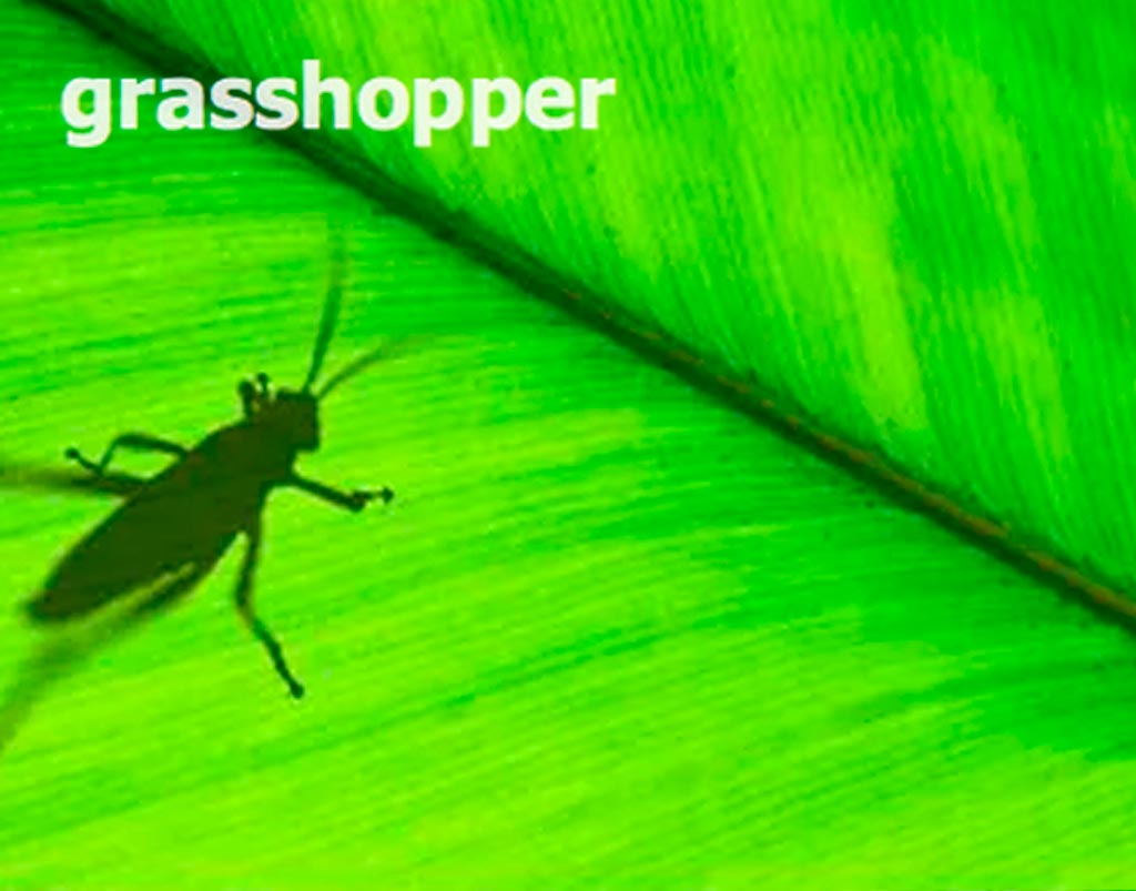 Grasshopper3D File Format Rendernode